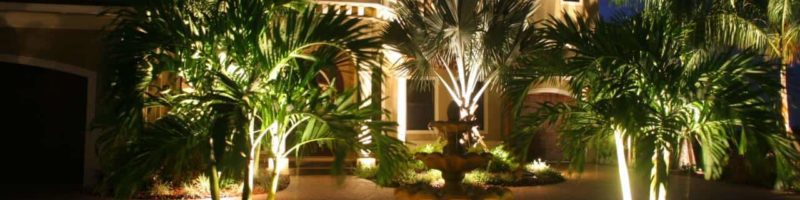 Landscape Lighting Austin