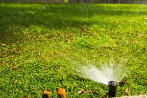 link to Austin Sprinkler Maintenance page