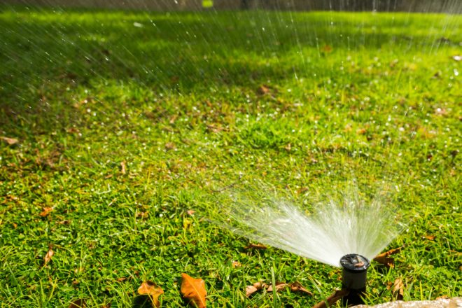 link to Austin Sprinkler Maintenance page