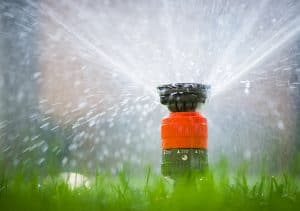 Common Reasons To Replace Your Sprinkler Heads Smart Earth Sprinklers Austin Sprinkler Irrigation Services