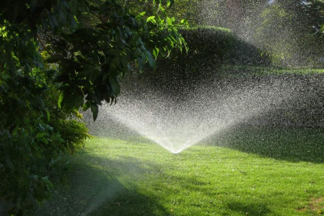 lush lawn with sprinkler working nicely