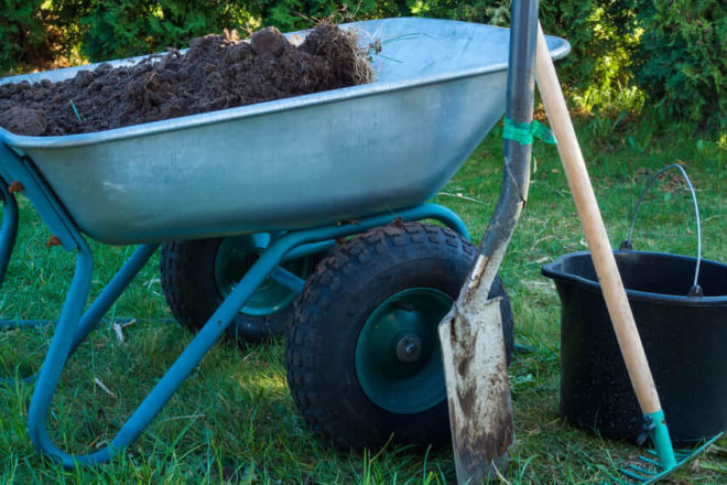 Choosing a Soil Amendment