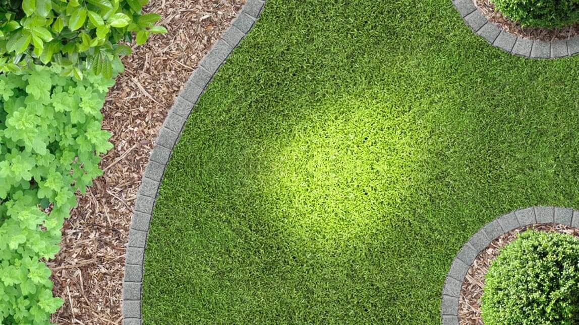 Green grass lawn - How to Detect Irrigation System Leaks